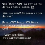 "The ""What NOT to say to an #Autism parent"" series: #2"